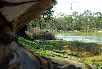 Murray River Changes