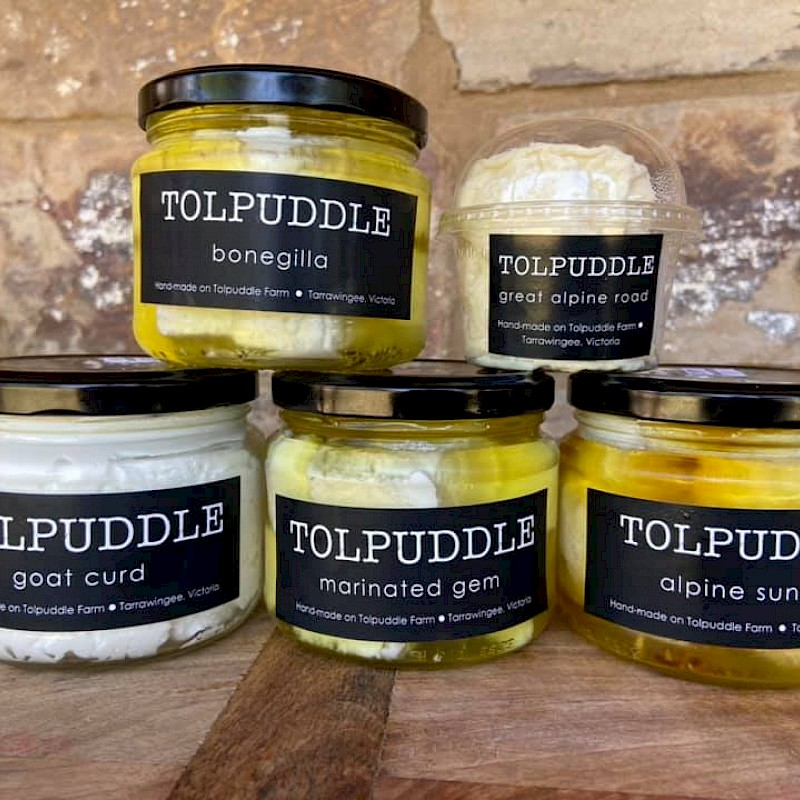 Tolpuddle Goats Cheese
